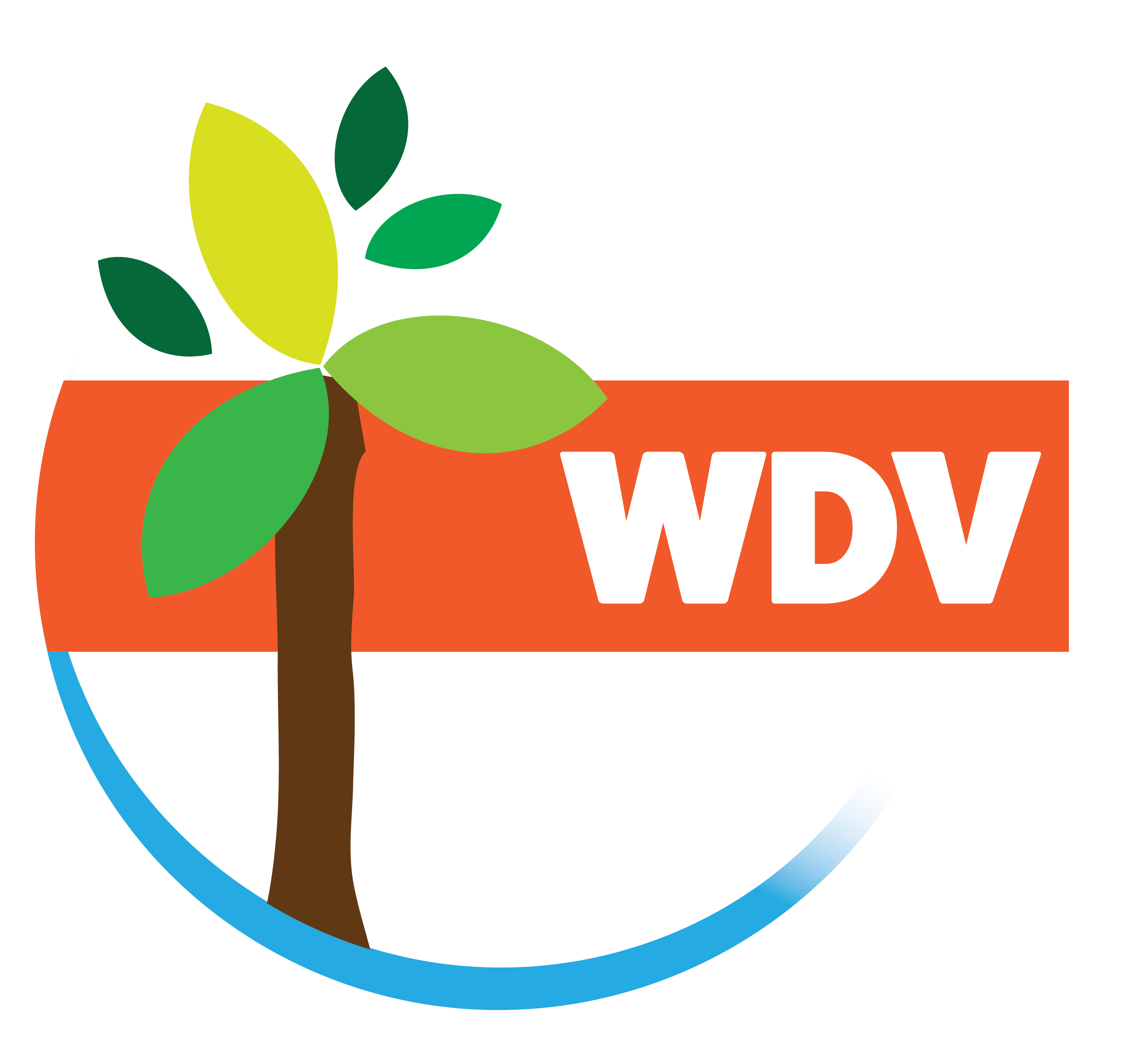 Woodville Districts Vision Logo